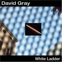 White-Ladder