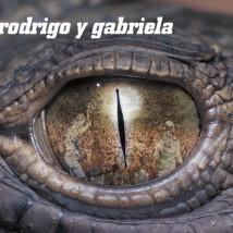 RodrigoyGabrielacover